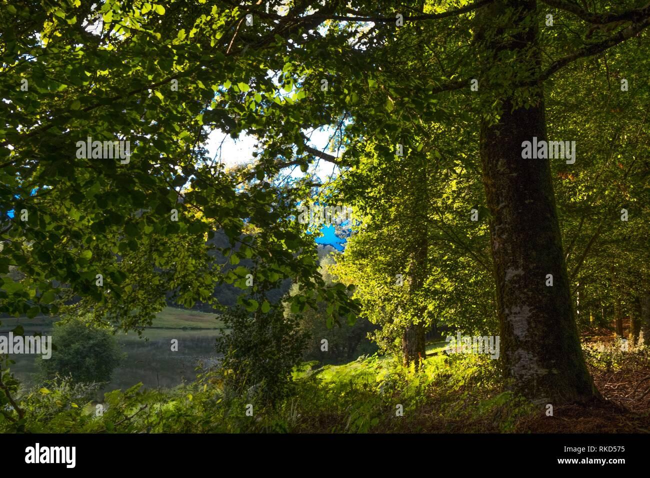 Francia, Occitanie,mucho, depósito de agua por la Tronquiere. Imagen De Stock