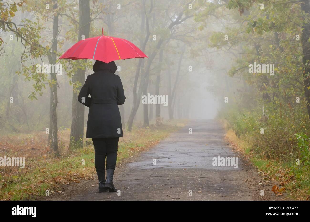 Pisado mujer con sombrilla roja y bosque neblinoso. Imagen De Stock