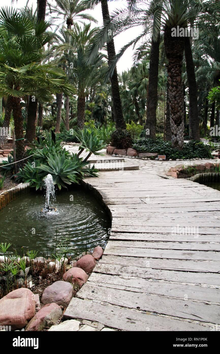 La Vegetación Verde En El Jardín Botánico Huerto Del Cura En Elche España Fotografía De Stock Alamy