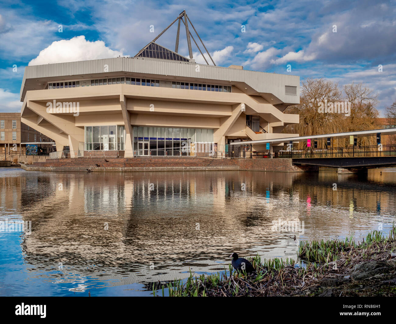 Hall Central y el lago en la Universidad de York, Reino Unido. Ejemplo de arquitectura Brutalist desde 1960 Imagen De Stock