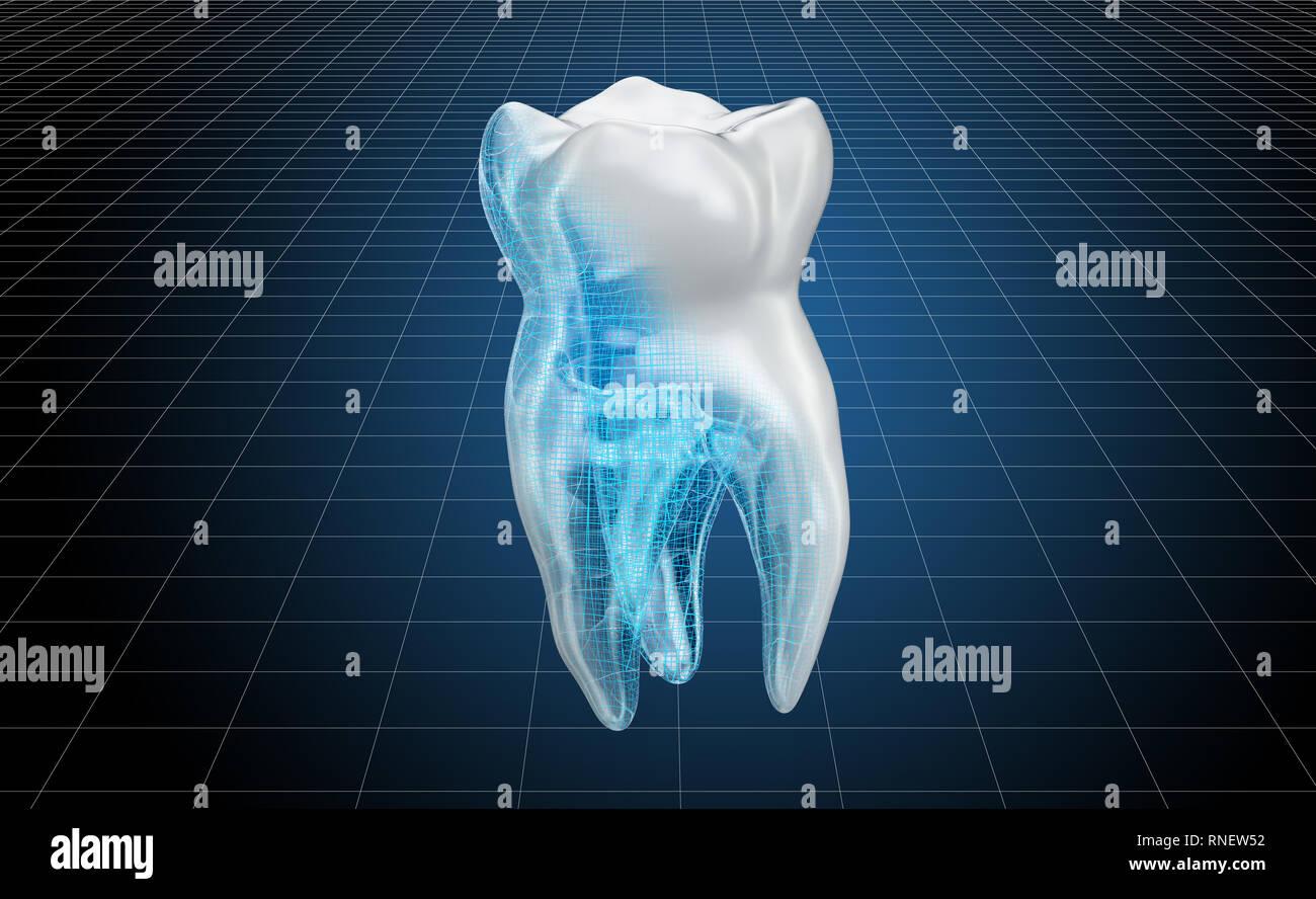 19e101847550 Visualización de modelos CAD en 3D de los dientes