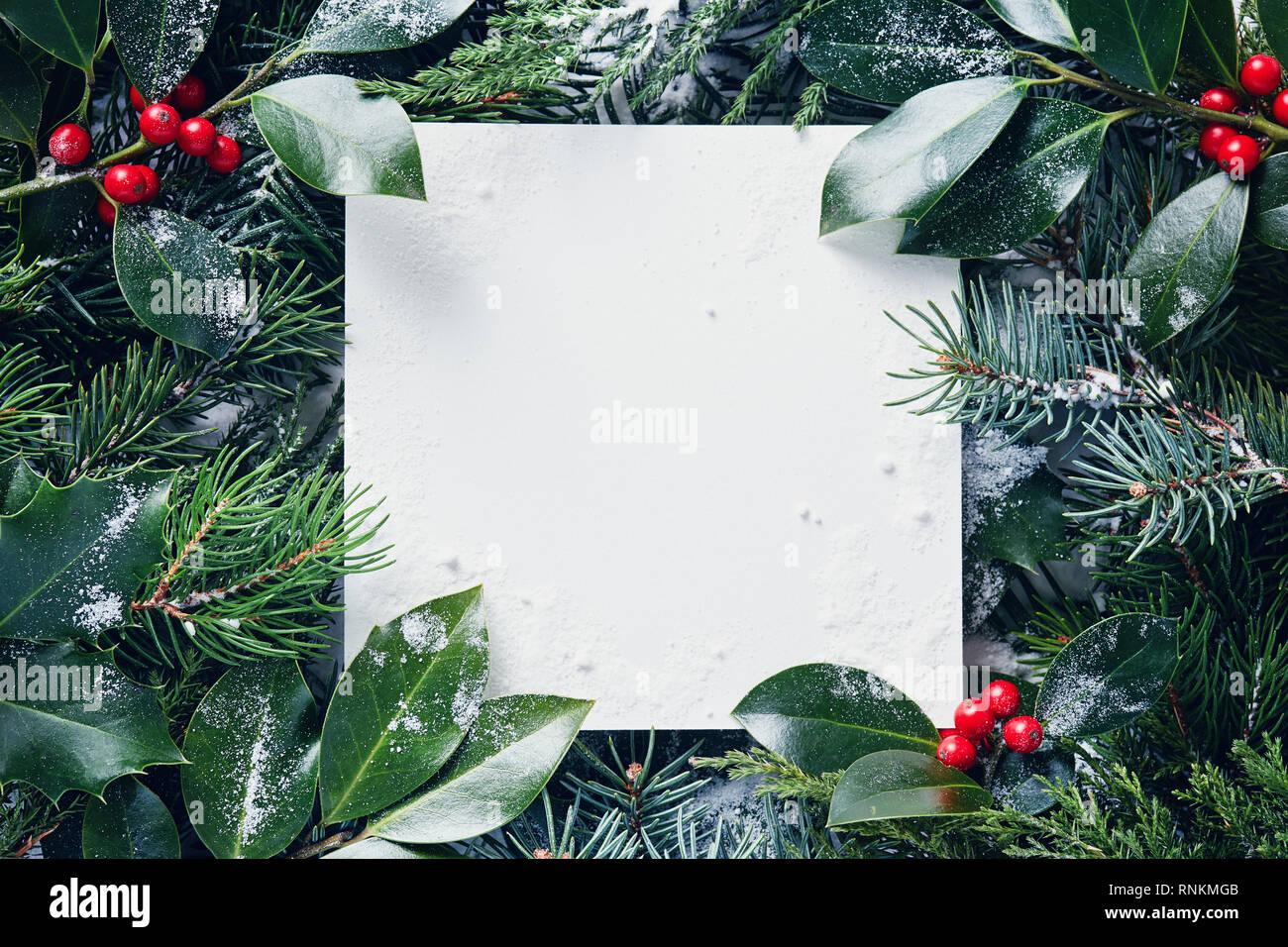 Marcos Para Fotos De Arbol De Navidad.Marco Decorativo De Las Ramas De Un Arbol De Navidad Y Bayas