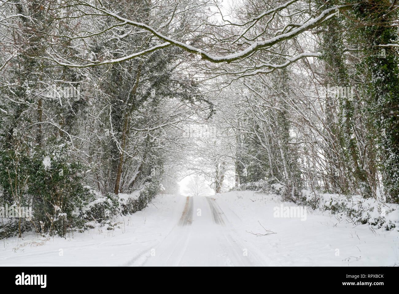 Carretera de campo cubierta de nieve cerca de Eastleach en enero. Eastleach, Cotswolds, Gloucestershire, Inglaterra Foto de stock