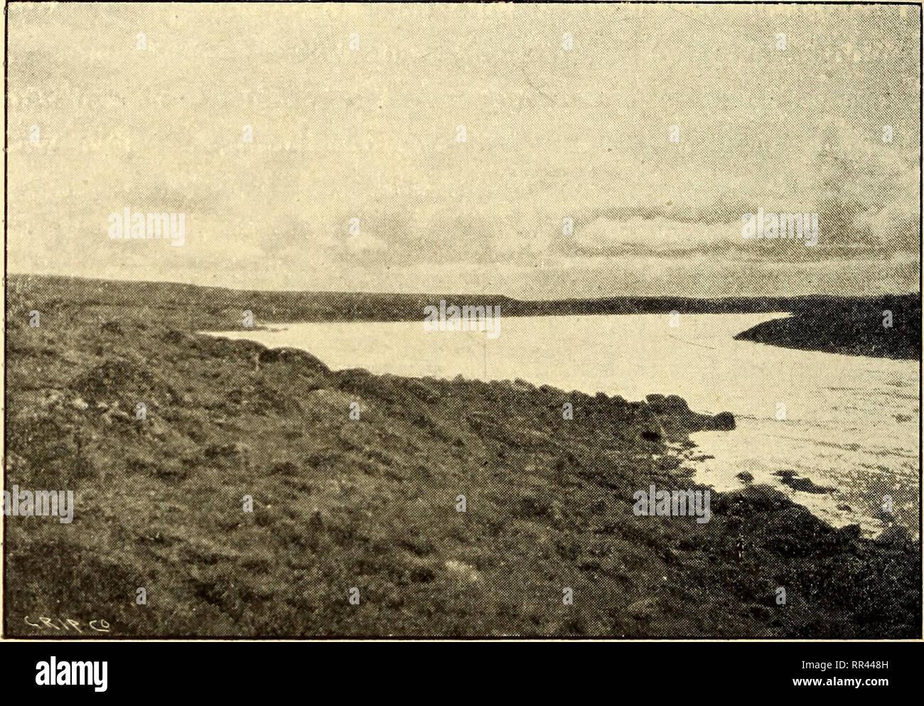 . A través de los sub-Artics de Canadá, un viaje de 3.200 millas por canoa y zapata de nieve a través de las tierras áridas, incluida una lista de plantas recogidas en la expedición, un vocabulario de palabras Esquimal, un mapa de ruta y full clasificados index. La botánica; lenguas esquimal. 82 A TRAVÉS DE LOS SUB-ARCTICS bahías de Canadá, la entrada al amplio río Telzoa (superficial) fue descubierto. Sin duda fue una gran, amplia y el río rápido, dividido en muchos canales superficiales, cuyas aguas parecen haber sido, por así decirlo, derramado por el borde del lago en los últimos lugares. Este fue el río habíamos definido por explorar, una Foto de stock