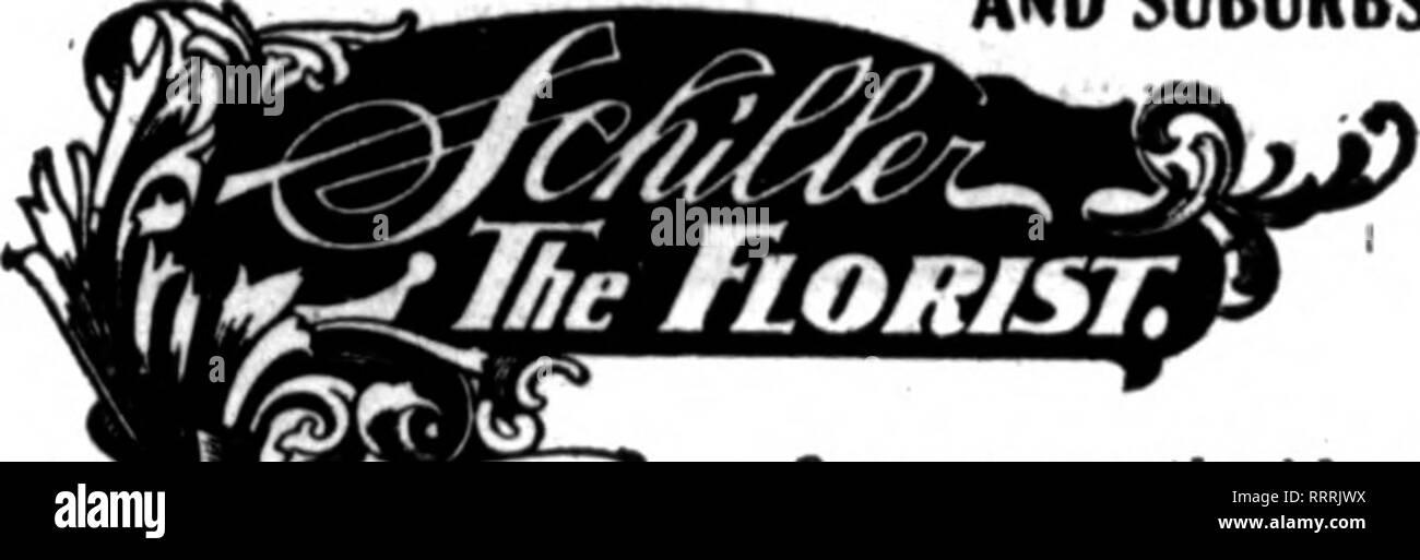 """. Floristerías' Review [microforma]. La floricultura. 3343 W. MA.DISON ST"""" NBAR OAKFIKLU PARK Chicago Des Moines FLORAL ALFA CO. 1441S. WfOMJili Avv.. Cbloaaro, m. 02S Walnut St., Dea Molnss, la. Más grande y más céntrico tienda en la ciudad. Todas las órdenes dadas oromnt atención. FRIEDMAN FLORES Chicago, Ill. 638 8. Hotel Congresa Mlehltan Ave., C01TBTE8IB8 BXTSXDED A TODOS FLOBISn t>ellverle8 al noroeste de Unlversltr y todas las ciudades del norte de la orilla. D""""mpat""""r St., EVAN""""TON.H.l,. L. D. Teléfono 2642, Fischer Bros, n^ Aurora, E Jos. M. Smely Y ALREDEDORES Piion""""s 147 DE KALB, malos. Aurora Greenho Foto de stock"""