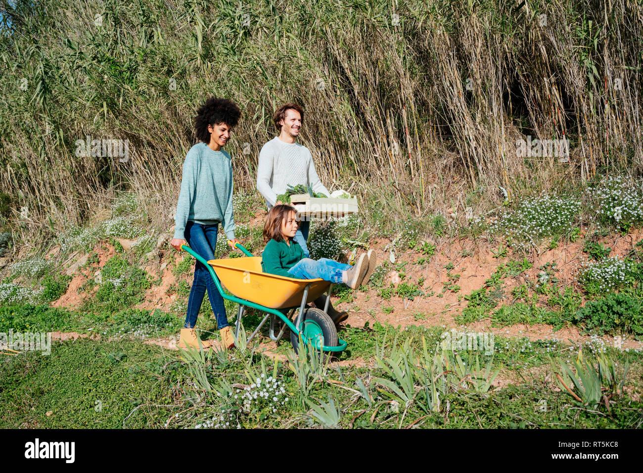 Familia caminando por una pista de tierra, empujando la carretilla de mano, caja de transporte con verduras Foto de stock