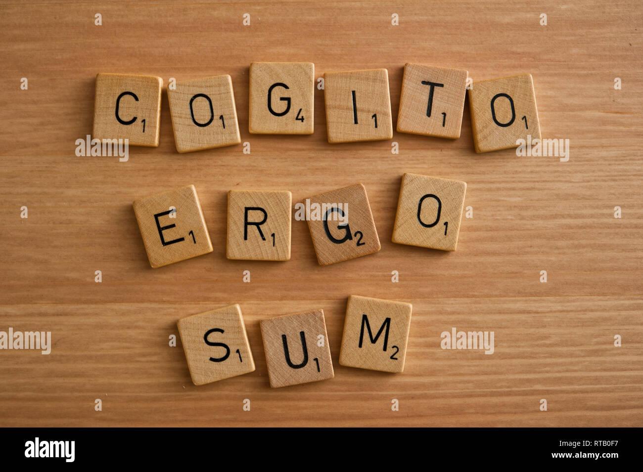 Cogito Ergo Sum Foto de stock
