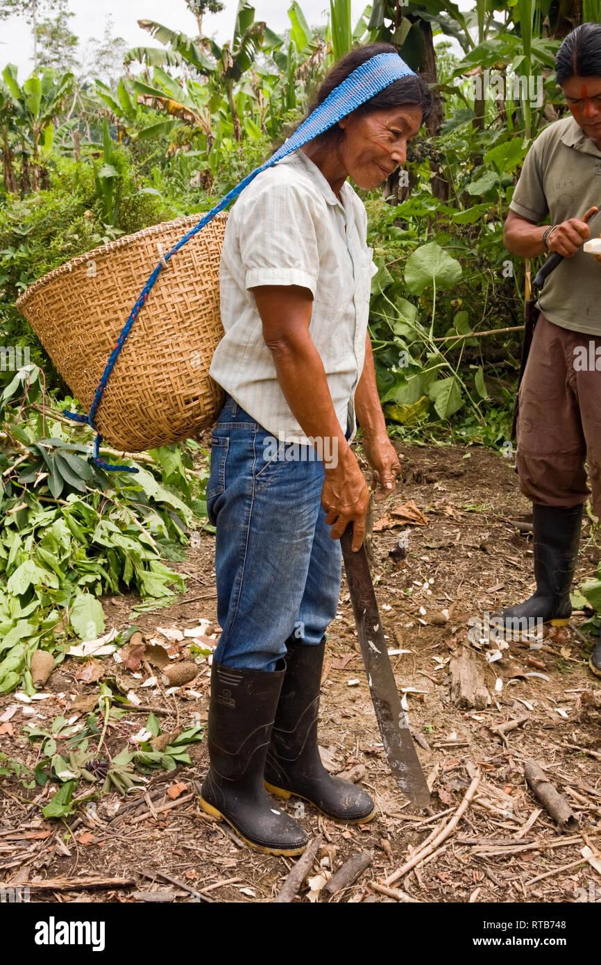 Mujer que llevaba el canasto, la tira en la cabeza; machete; tribu amazónica indígena; facial transpiración cae, caliente, húmedo, botas de goma, Río Napo; Amazonas Tropic Imagen De Stock