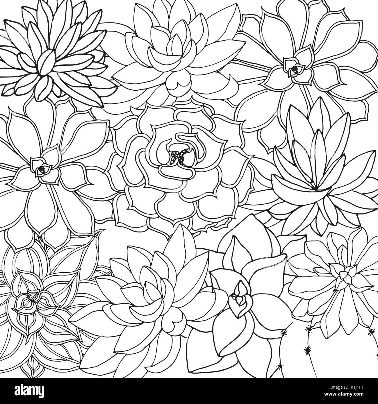 Doodle En Vector Fondo Floral Con Garabatos En Blanco Y Negro Para