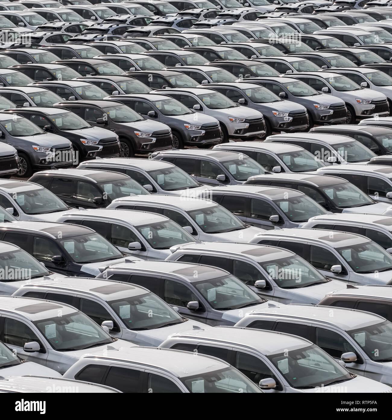 Fila de coches nuevos en venta en puerto. Los automóviles nuevos antecedentes Imagen De Stock