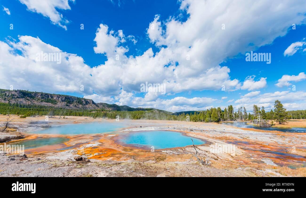 Negro Ópalo piscina, aguas termales, algas amarillo y depósitos minerales, Biscuit Basin, el Parque Nacional Yellowstone, Wyoming, EE.UU. Foto de stock