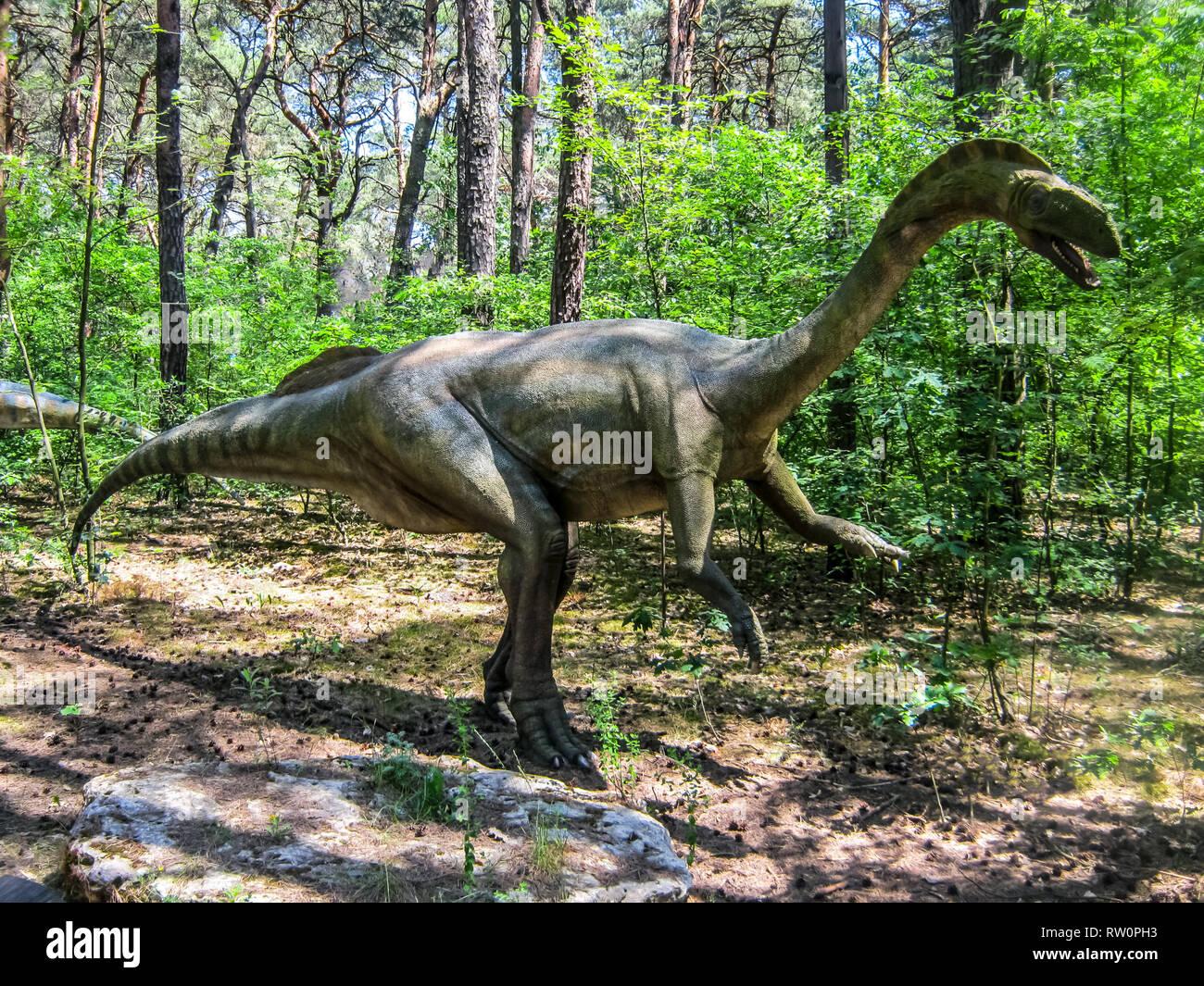 Dos Patas De Dinosaurios Herbivoros En El Bosque Fotografia De Stock Alamy Elegir categoría curiosidades dinosaurios dinosaurios carnívoros dinosaurios herbívoros dinosaurios omnívoros. https www alamy es dos patas de dinosaurios herbivoros en el bosque image239118911 html