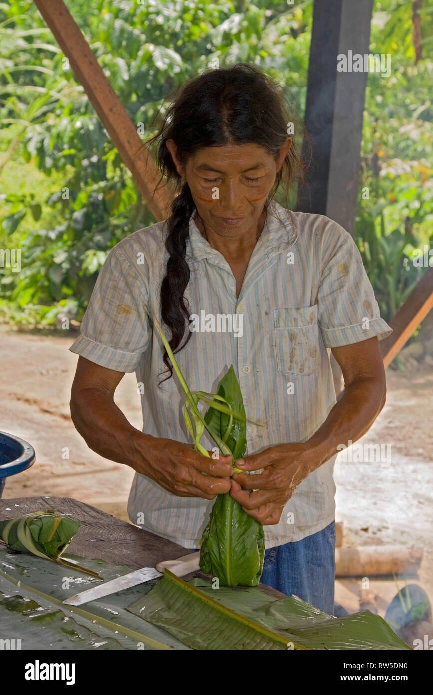 Mujer indígena envolver alimentos; hojas mojadas; cocinar; al aire libre, trabajo, sudor facial, caliente, húmedo, manchada blusa, selva tropical amazónica; Ecua Imagen De Stock