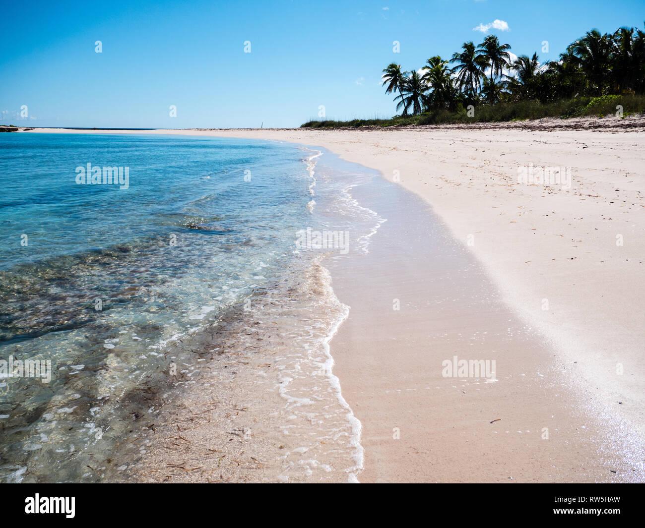 Las olas en la orilla de la playa tropical con palmeras, Twin Cove Beach, Costa Atlántica, Eleuthera Island, Las Bahamas, El Caribe. Foto de stock