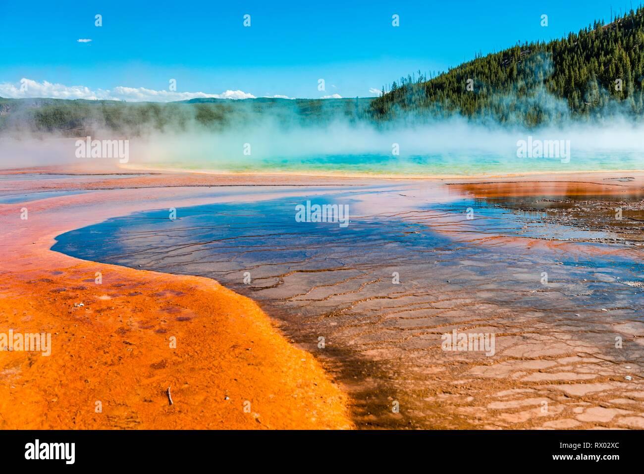 Los depósitos minerales de color en el borde del muelle de vapor caliente, vista detallada, Grand Prismatic Spring, Midway Geyser Basin Foto de stock