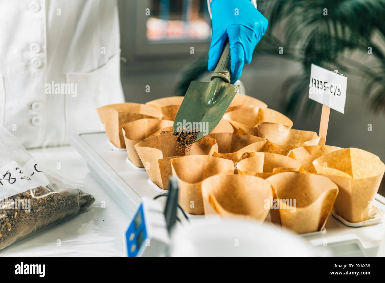 Los análisis de laboratorio de suelo Foto de stock