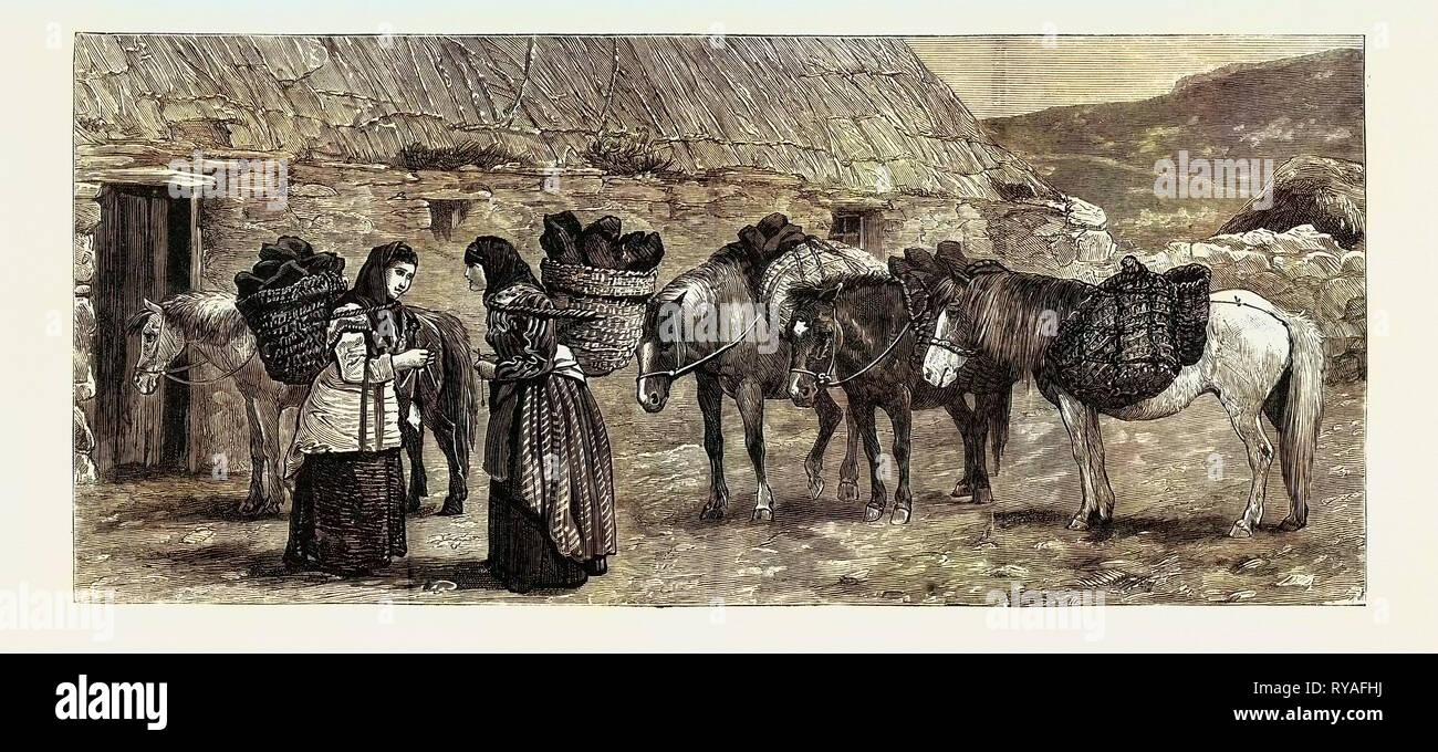 El Duque de Edimburgo en las Islas Shetland: ponis Shetland Imagen De Stock