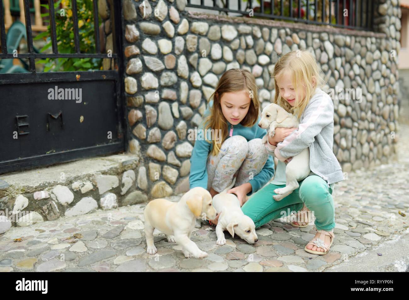 ea5e93be33d7 Dos hermanas jóvenes lindo celebrar pequeños cachorros blancos al aire  libre. Niños jugando con el