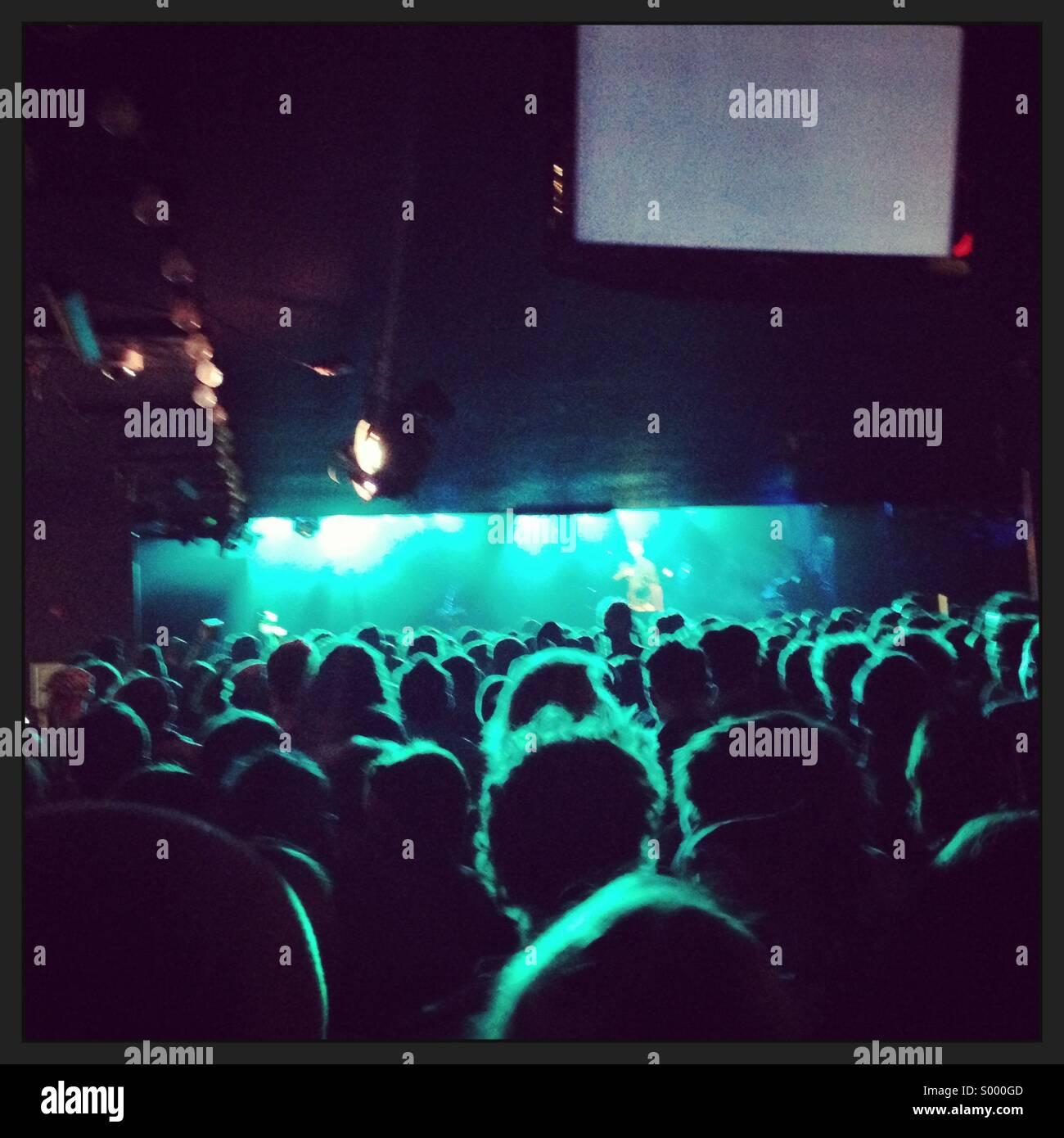 Multitud en un concierto Imagen De Stock