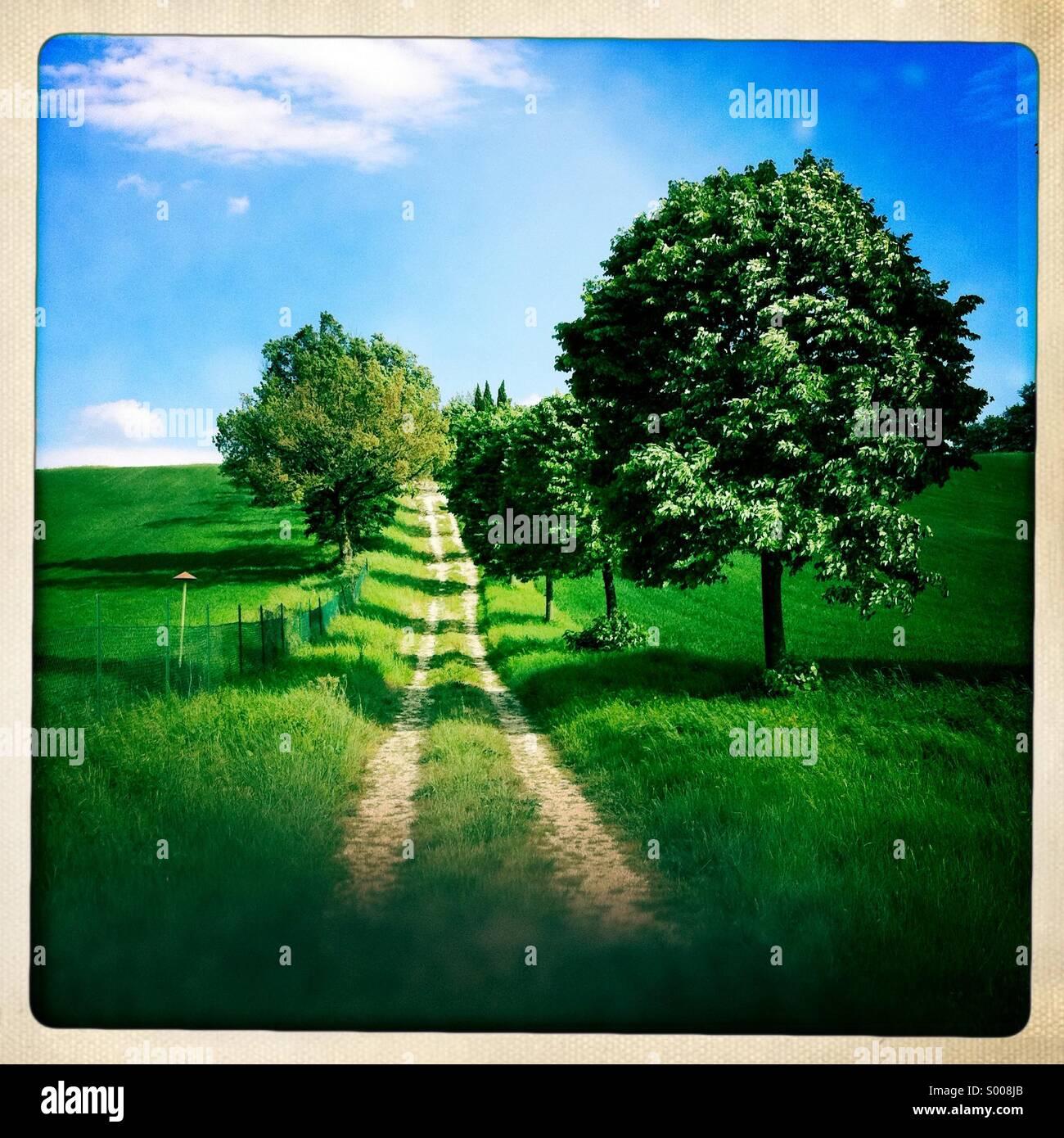 Pequeño país largo camino con árboles en un día de verano con el cielo azul brillante Imagen De Stock