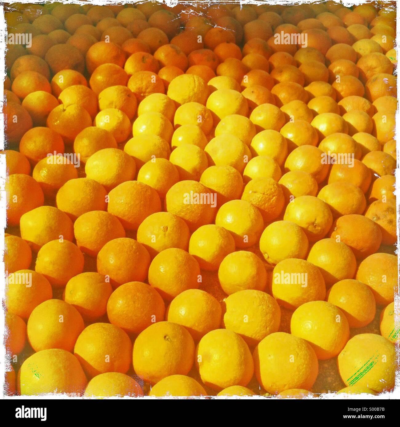 Las naranjas en exhibición en el festival del limón Menton Francia Imagen De Stock