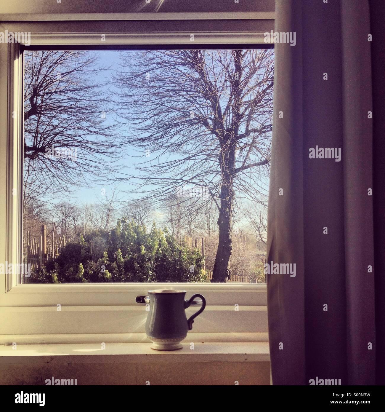 Mañana de primavera con té Imagen De Stock