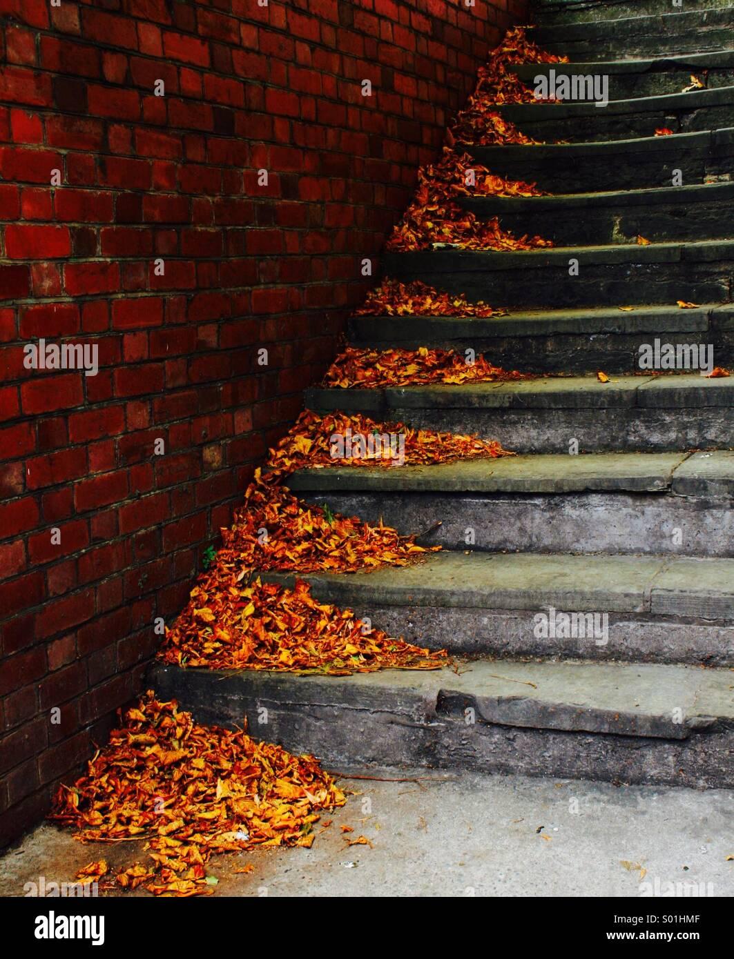 Hojas de otoño sopla en esquinas de escalones de piedra Foto de stock