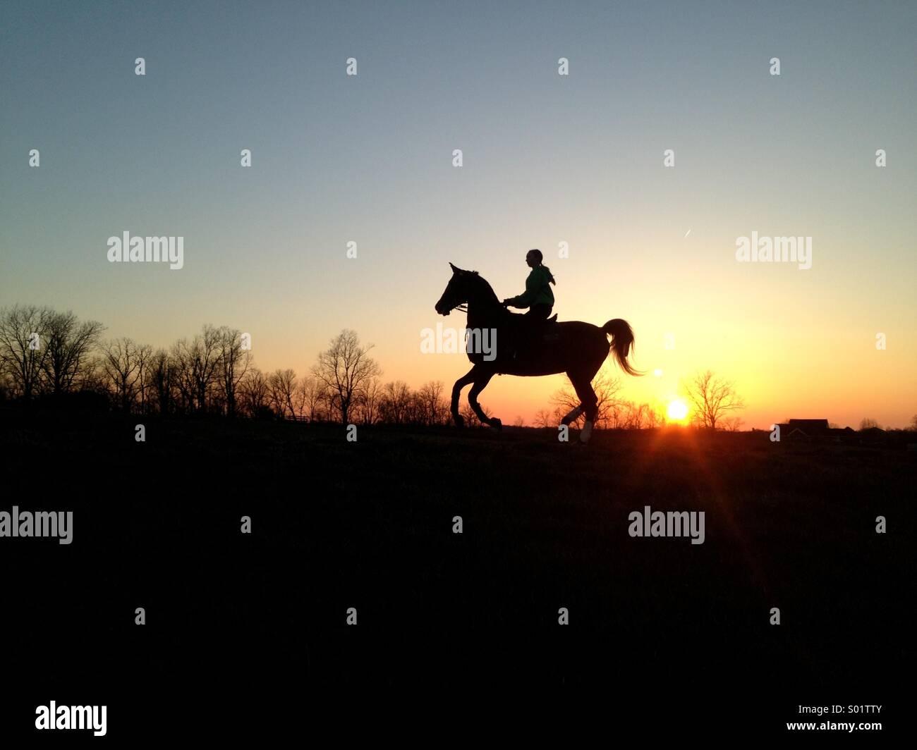 Chica en caballo en el atardecer Foto de stock