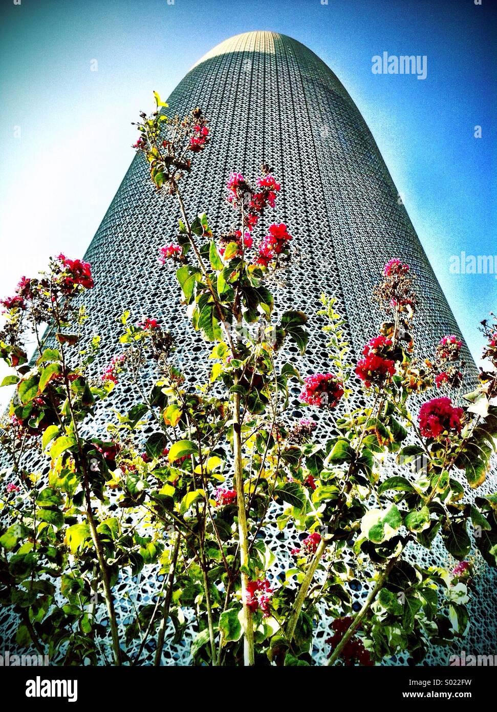 Flores silvestres crecen en frente del edificio ultramoderno, Doha Imagen De Stock
