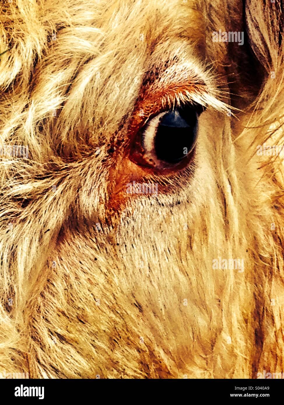 Delineador de ojos Foto de stock