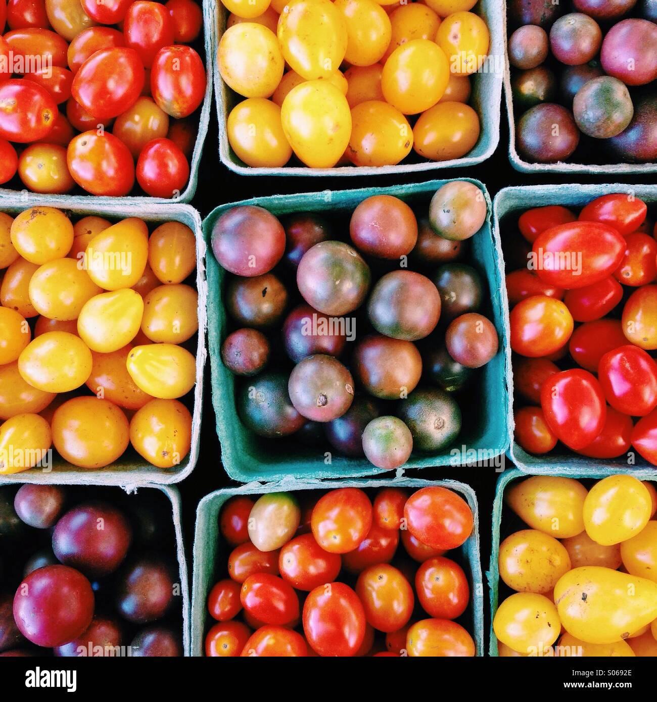 Variedad de coloridas tomates frescos de granja Imagen De Stock