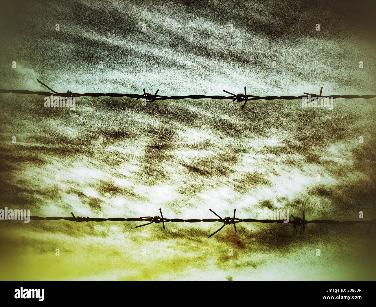 Las siluetas de los alambres de púas Imagen De Stock