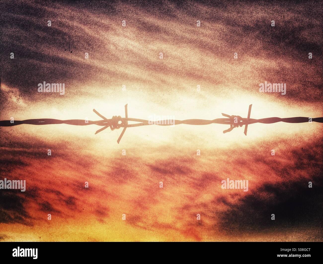 Barbwire contra la increíble puesta de sol Imagen De Stock