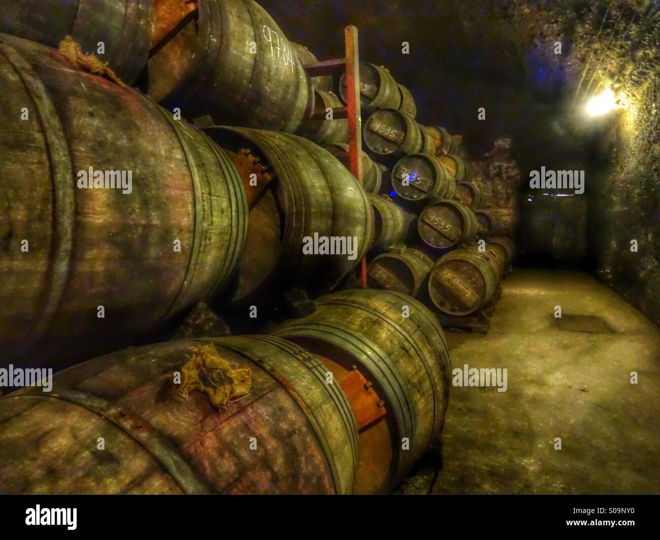Vino, vino, vin, viejo, Gourmet Vino superior Imagen De Stock