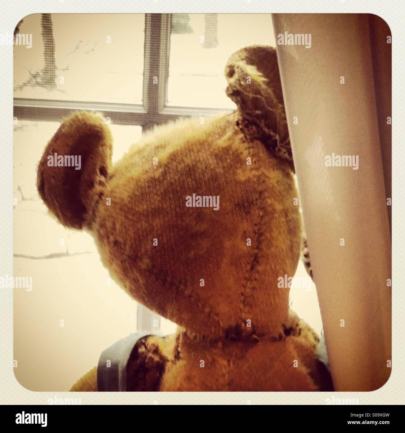 Vintage Teddybear mirando por la ventana. Imagen De Stock