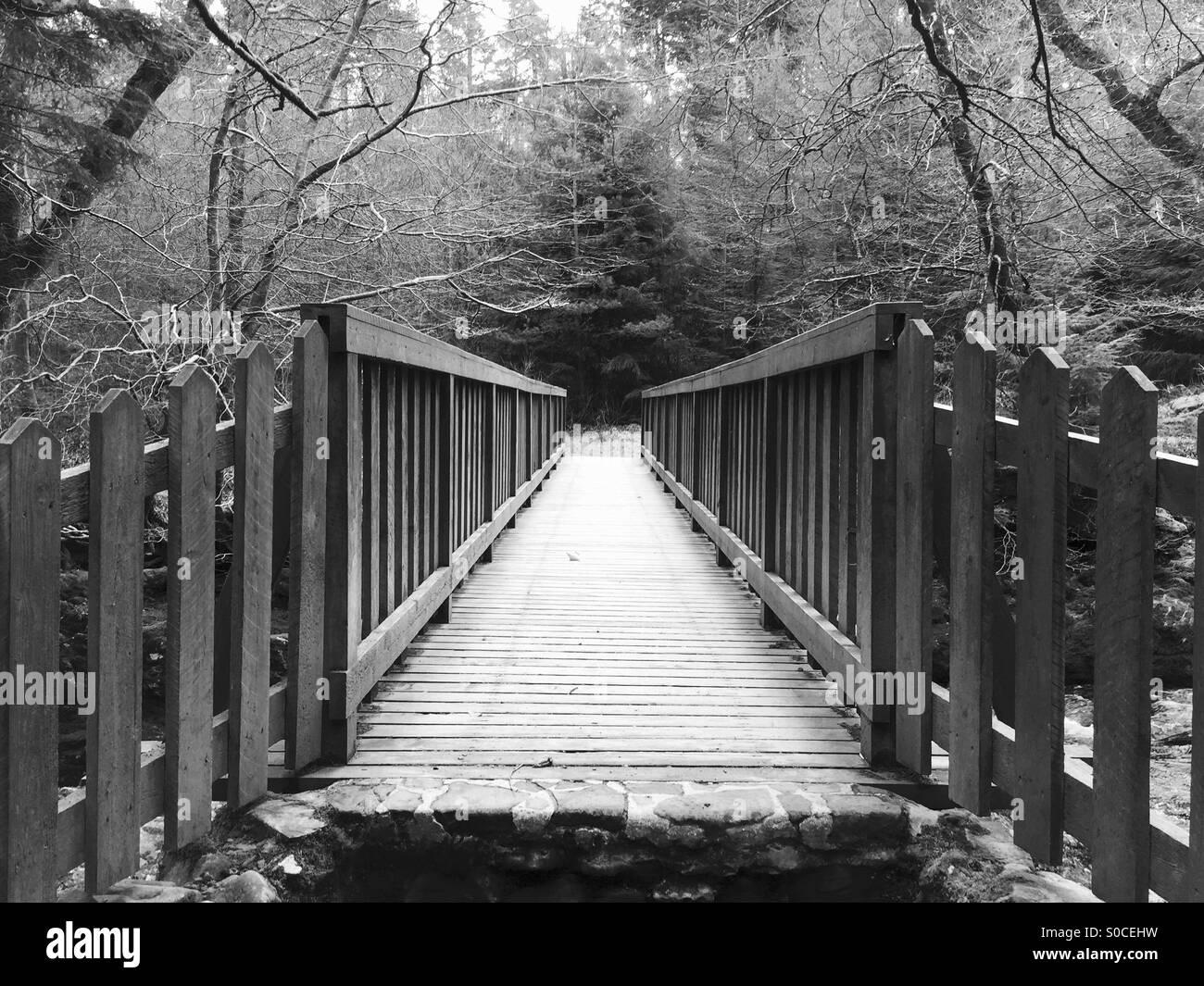 Puente Blanco y negro Foto tomada en Tollymore Park, Irlanda del Norte 28-03-15 Foto de stock