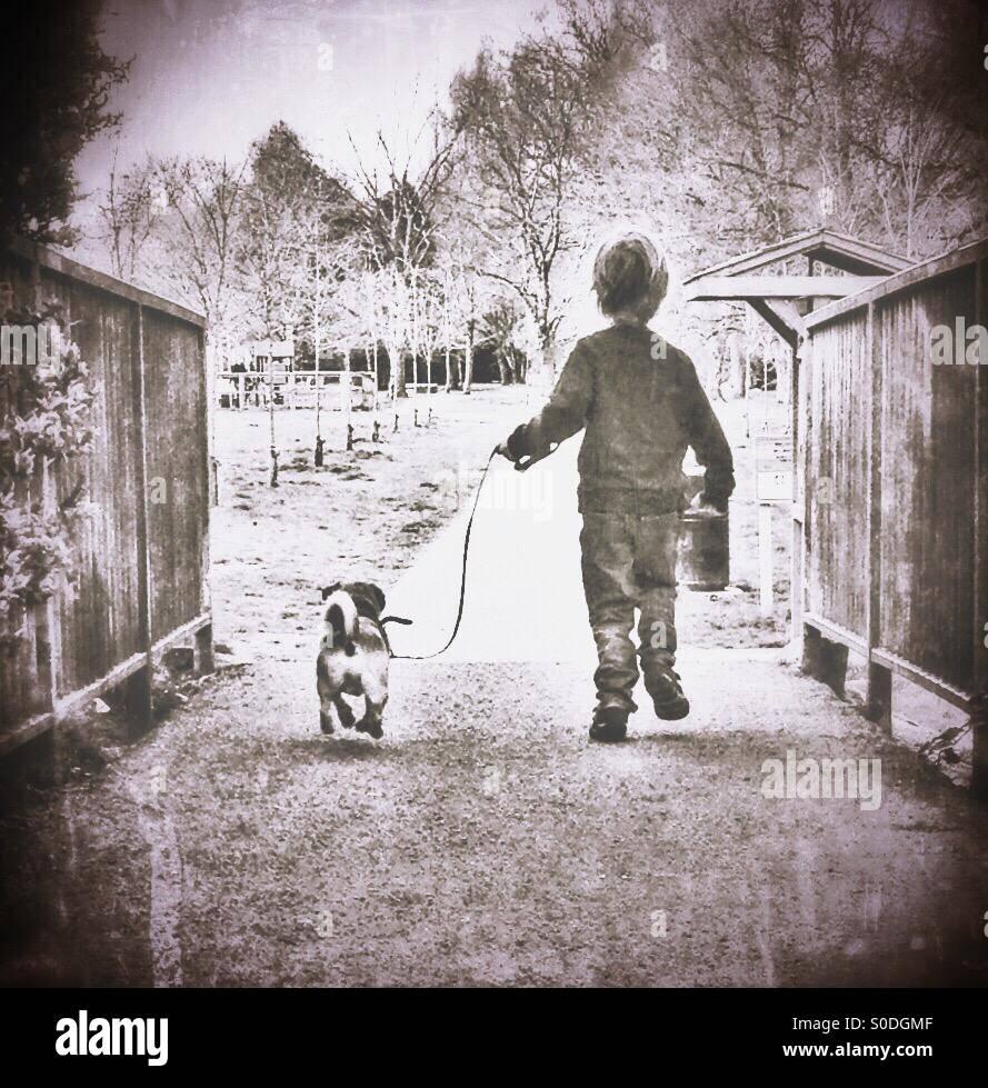 Pasear al perro Imagen De Stock