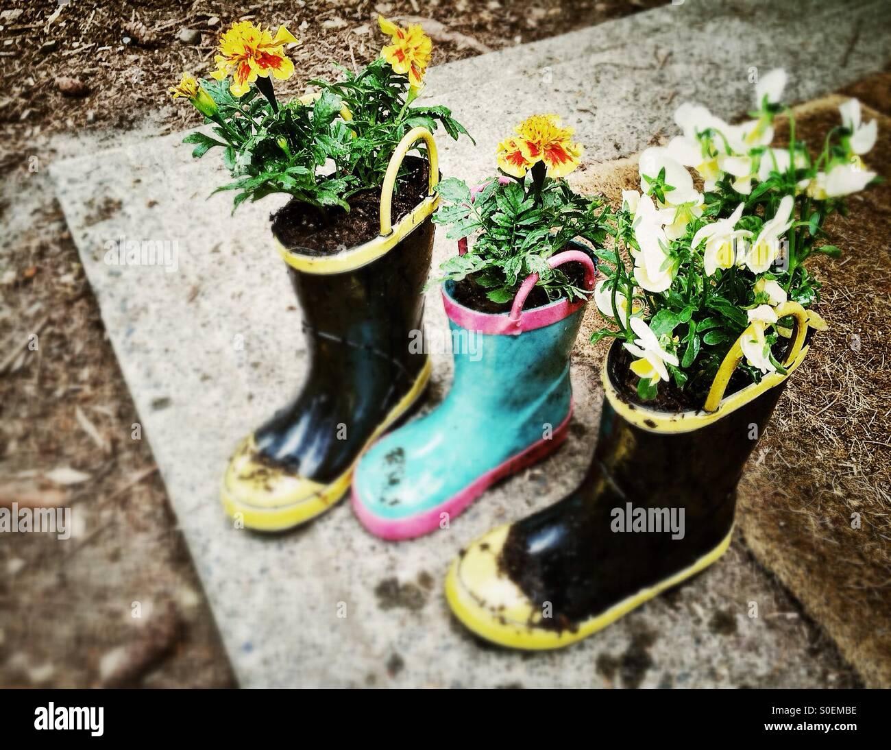 Flores plantadas en botas de niños Imagen De Stock