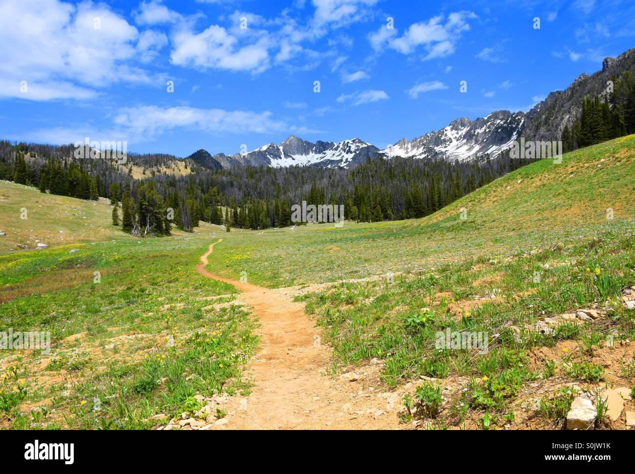 Senderismo en Montana cuenca colmena Imagen De Stock