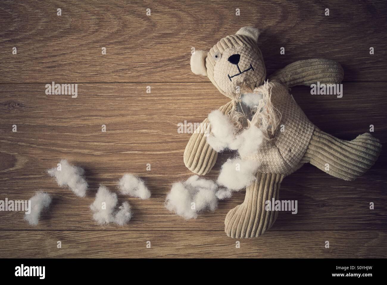 Un pequeño oso de peluche poniendo en un piso de madera con su relleno desgarrado y fuera. Imagen De Stock