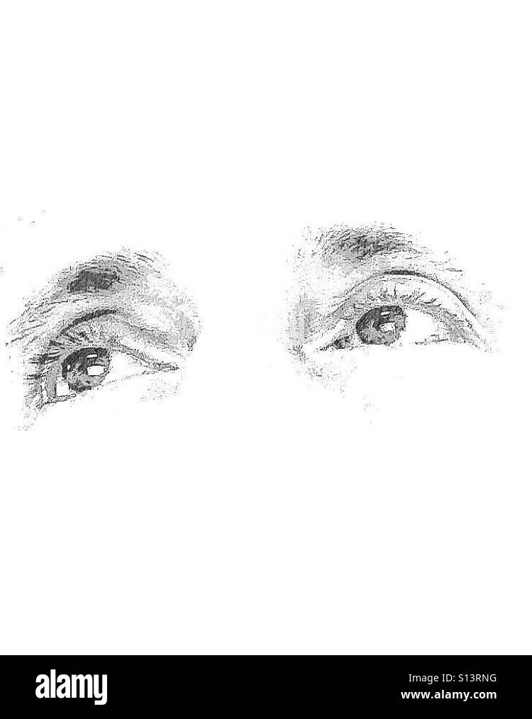 Ojos Imagen De Stock