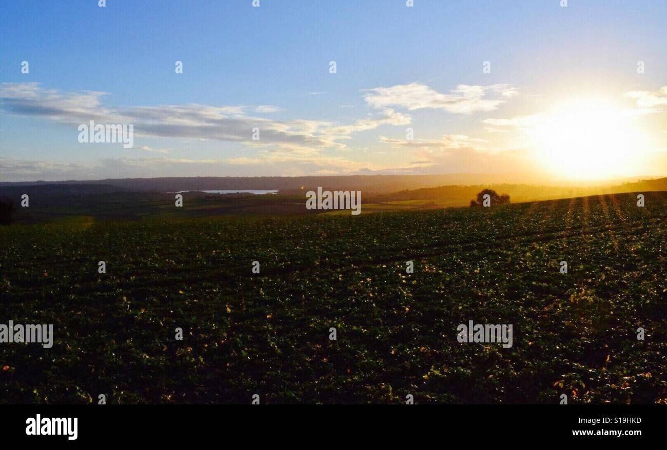 Atardecer en Somerset Foto de stock