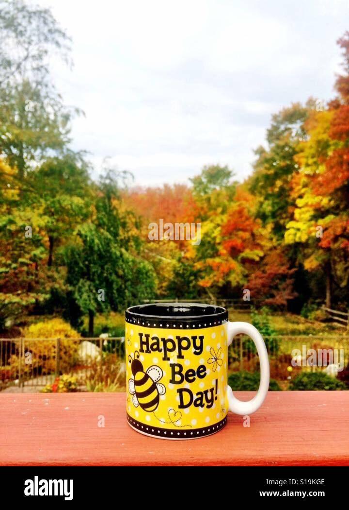 Día de otoño Foto de stock
