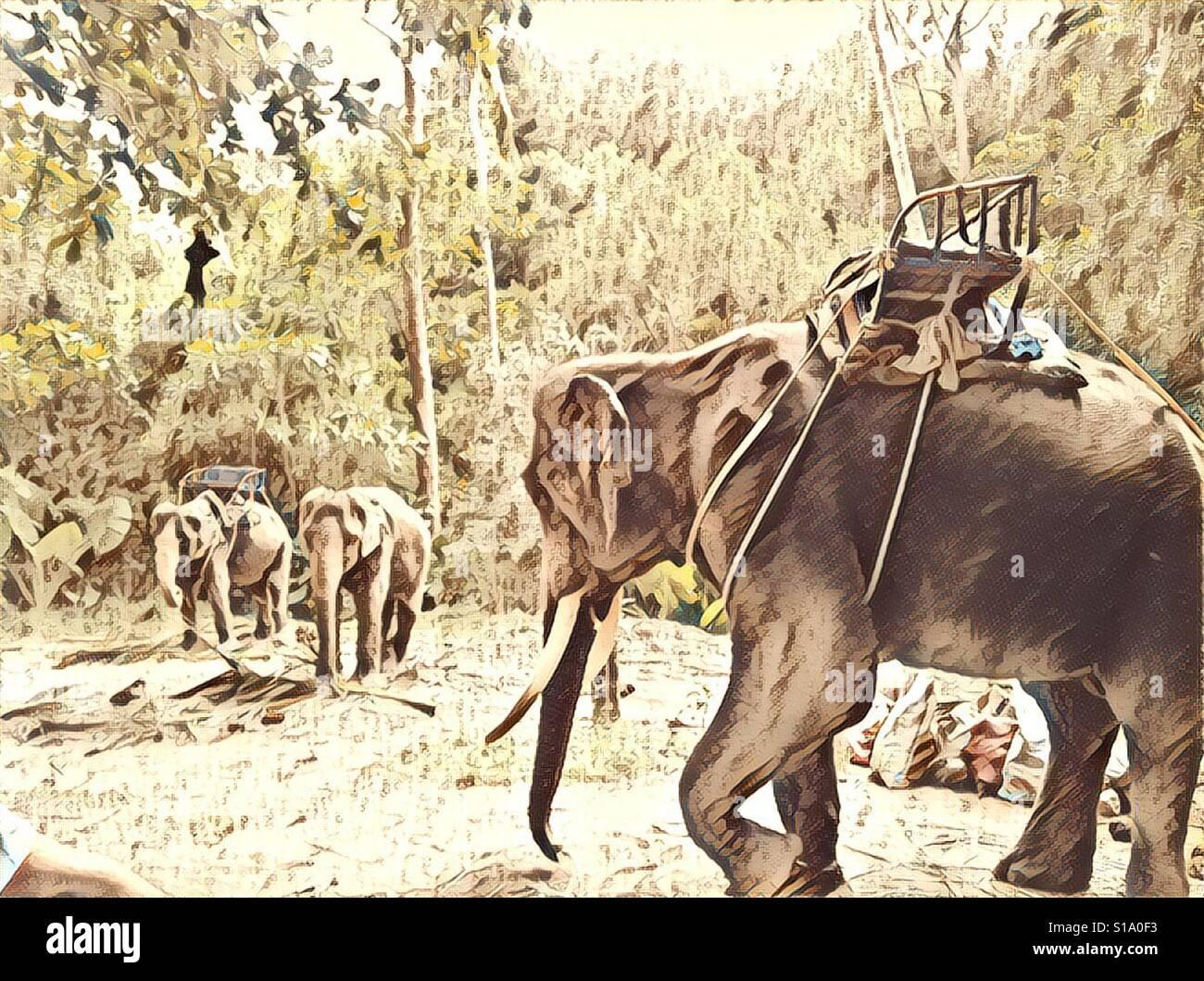 Los elefantes lifestyle Foto de stock