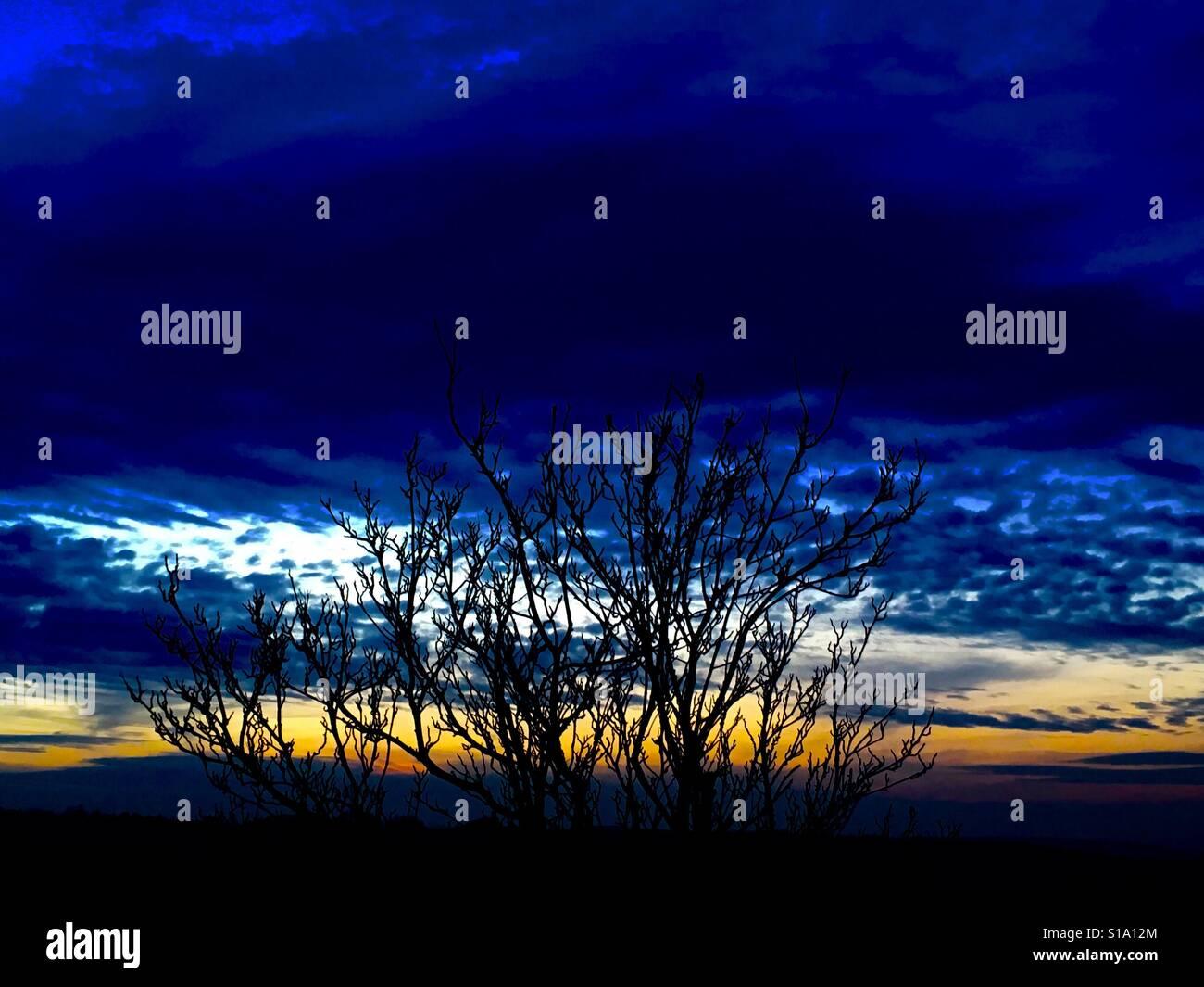 Magnífica última tira de Sunset Foto de stock