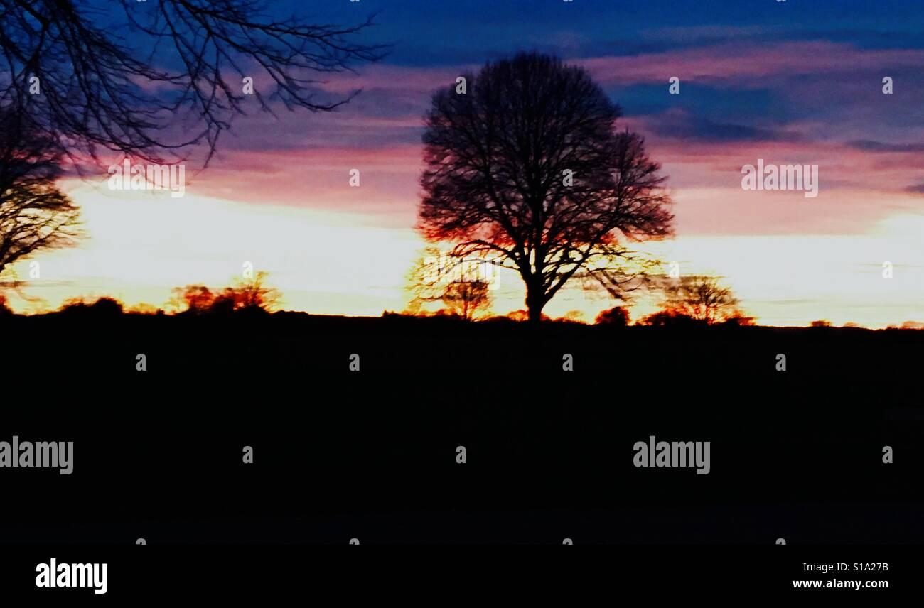 Puesta de sol sobre Durdham downs en Bristol Foto de stock