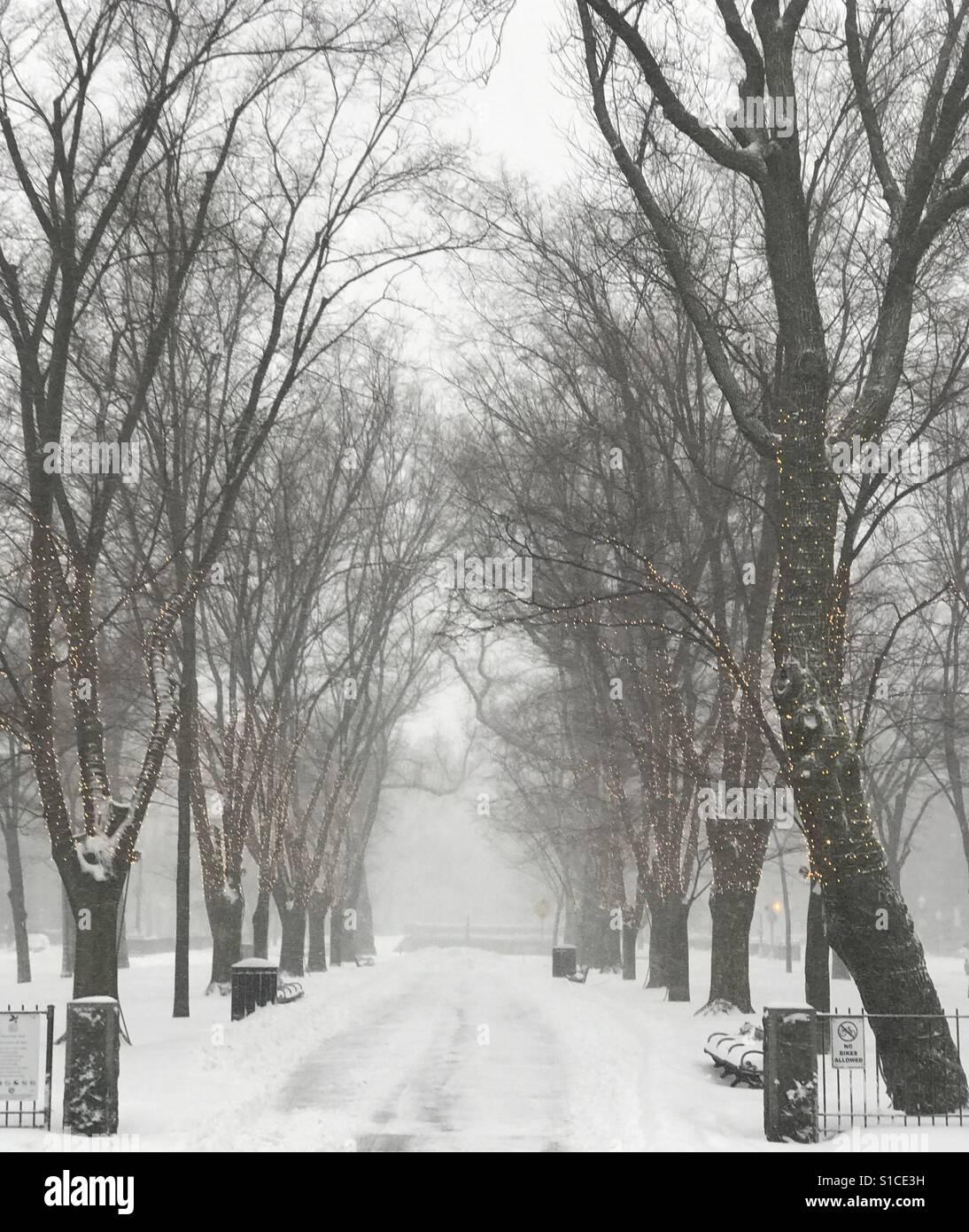 Invierno en Boston. Foto de stock