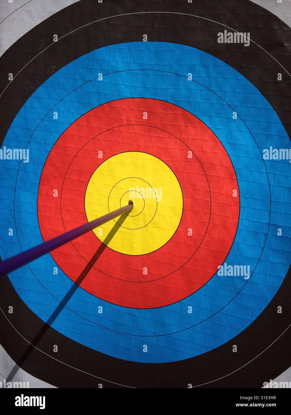 BULLSEYE! Una sola flecha golpea el centro muerto de un blanco de tiro con arco. Un concepto imagen para ilustrar Imagen De Stock