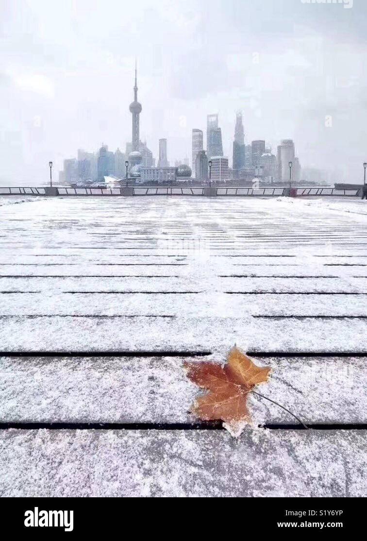 Después de una nevada noche Imagen De Stock