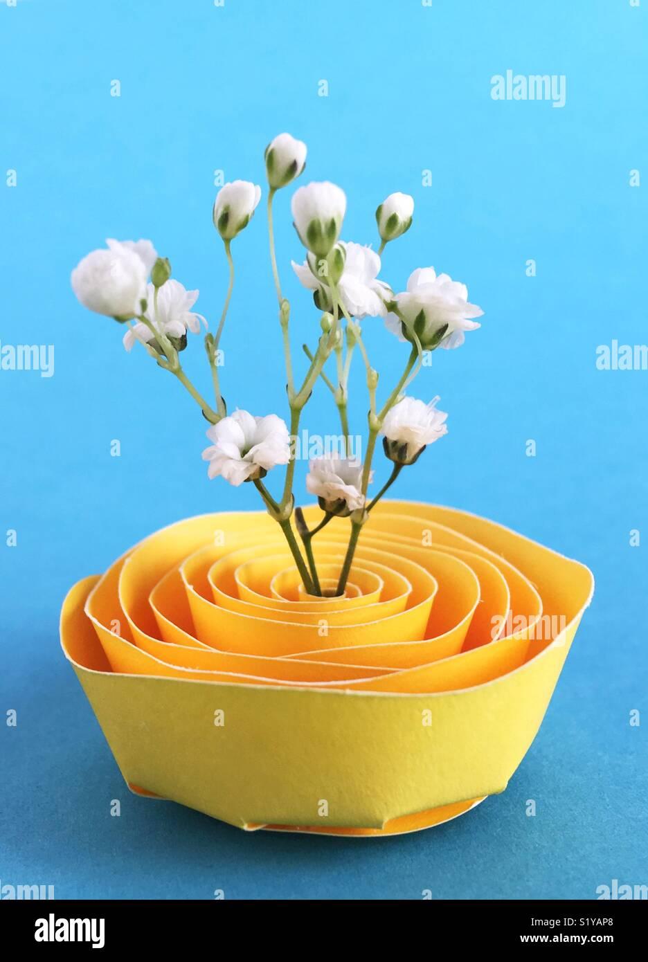 La respiración del bebé flores en un soporte de papel. Imagen De Stock